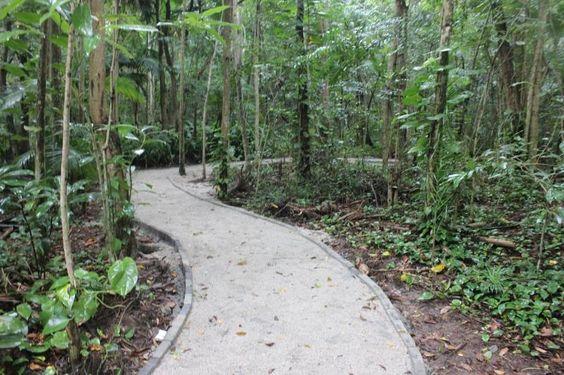 Projeto Trilha Parque Córrego Grande!