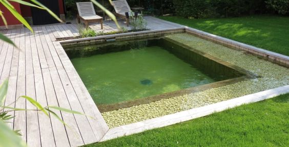 Turquoise on pinterest for Bassin piscine naturelle