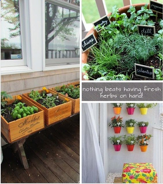 Create a herb garden in a small space gift ideas for Herb garden ideas for small spaces