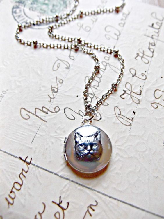 The World's Tiniest Cat Locket - product images  of