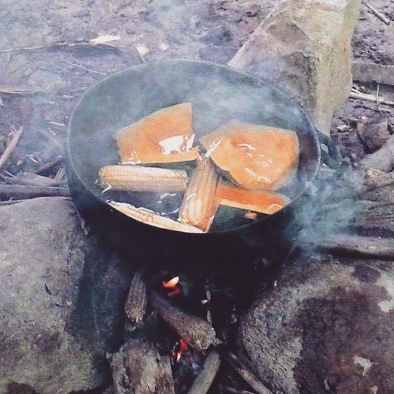 > #Jaraguenses jerbiendo maíz y auyama antes de limpiar rigolas