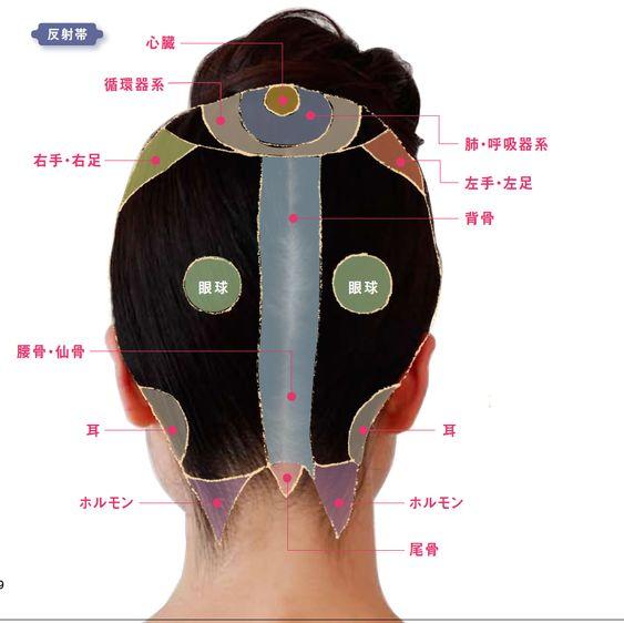 女性のための 効くツボと反射帯全図 頭編2 | YOLO