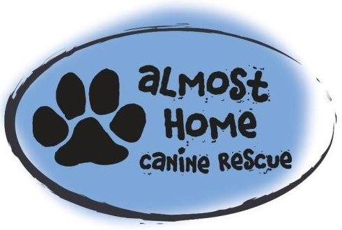 Almost Home Dog Rescue is dedicated to rescuing animals from the Madison, SD animal control facility.  (Lake County, SD only)  Almost Home Canine Rescue Madison, SD 57042 US  www.petfinder.com/shelters/SD17.html