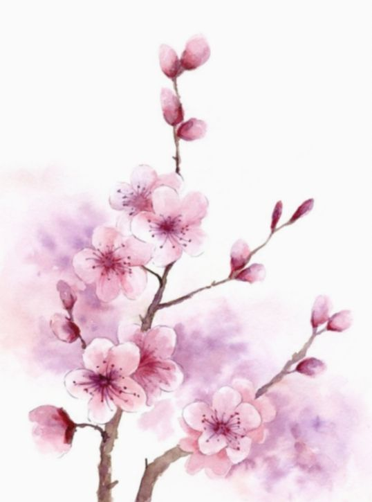 12 Drawing Flowers Watercolor Cherry Blossoms In 2020 Cherry