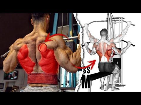 Pin On Musculation