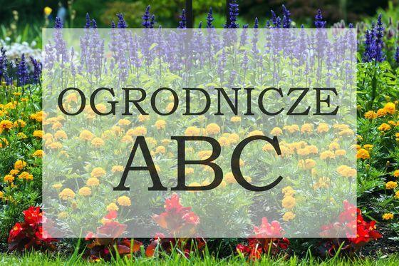 Ogrodnicze Abc Moj Piekny Ogrod Portal Dla Pasjonatow Ogrodnictwa Abc Calendar Novelty Sign