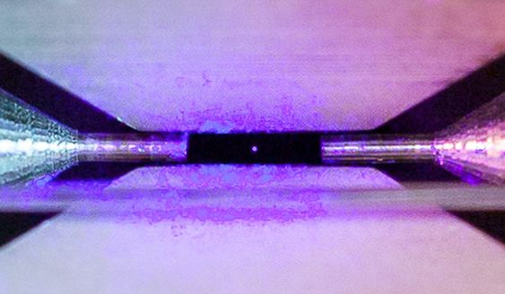 Zoom view of Single Trapped Atom