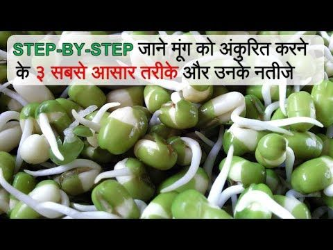 Pin On Bean Sprout Recipes