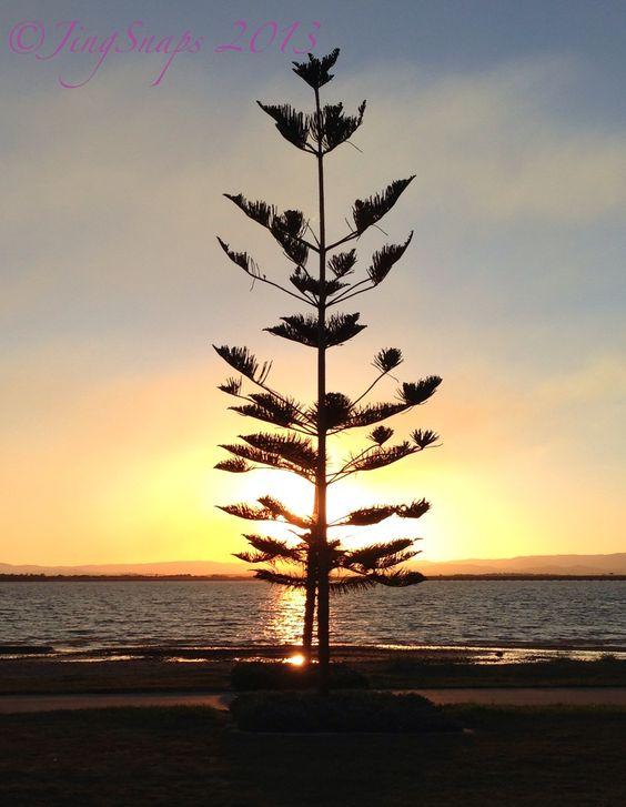 Taken Redcliffe, QLD 2013
