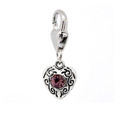 Amazon.com: Clip-on Birthstone Rhinestone Heart Charms February: Clasp Style Charms: Jewelry $5.30