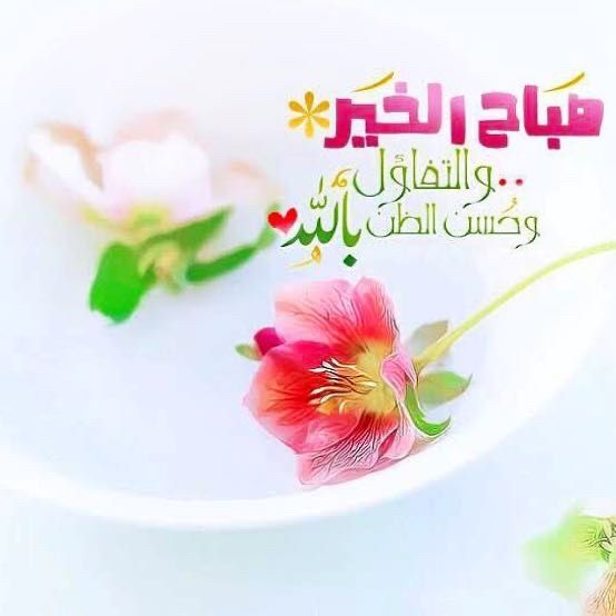 صباح الخير والبركة والأمل والتفاؤل وحسن الظن بالله صور إسلامية Good Morning Flowers Good Morning Photos Good Morning