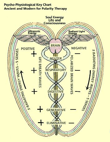 Fig 2. From Stone R. Polarity Therapy. Collected Works. Vol 3. 1986