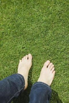 Epsom salts help grass produce vitamins & iron, magnesium. Epson Salt & Lawn Care   Home Guides   SF Gate