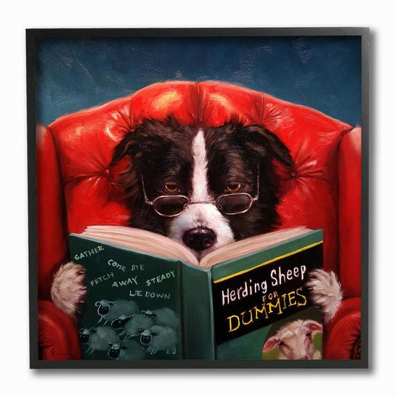 """The Stupell Home Decor Collection 12 in. x 12 in. """"""""Herding Sheep Dog Reading for Dummies Funny Painting"""""""" by Duy Huynh Framed Wall Art, Multi-Colored"""