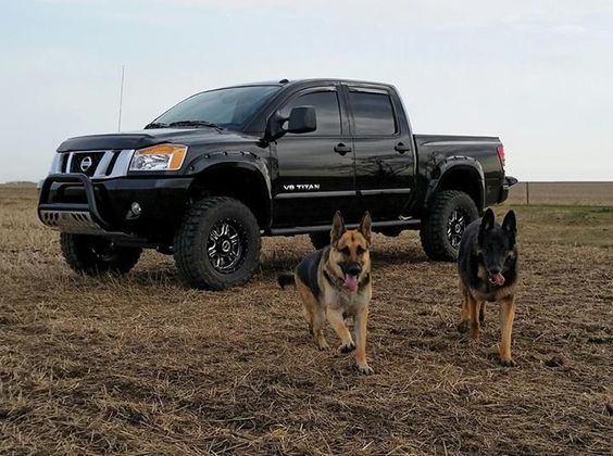 Owner tested, pup approved. How many Nissan Titan owners allow their four-legged friends to ride shotgun in their rides? Photo cred: Marcel D.