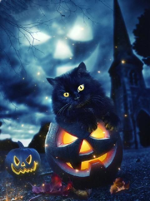 Diamond Painting - Little Halloween Black Cat - Floating Styles - Diamond Embroidery - Paint With Diamond- We also offer tools like lighting pad, diamond painting kits including quick painting pens. Create Your Own Paint With Diamonds now! - Buy Diamond P