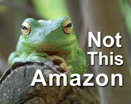Cheap LCD TVs for Sale on Amazon, No Competition and Resistance is Futile
