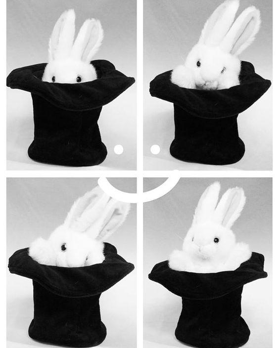 There's a rabbit in my hat 😊🐰 #rabbit #folkmanis #puppet #kids #kidsonlineshop #kidsstuff #havefun
