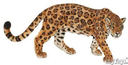 Jaguar Dessin Animales Animaux Sauvages Jaguar