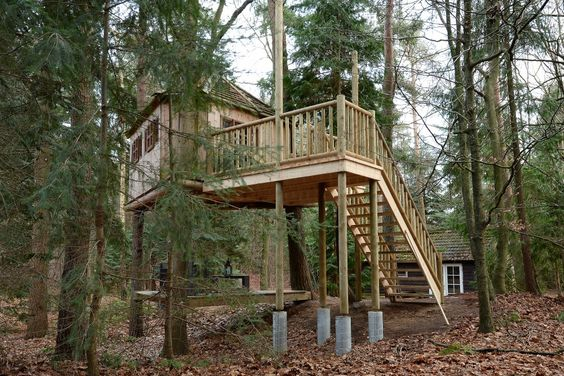 Bijzonder overnachten in een boomhut in Drenthe