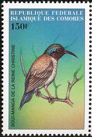 Fork-tailed Sunbird stamps - mainly images - gallery format
