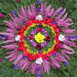 Summer Solstice Group Meditation, Sunday, June 21st at 3:00 your time. More information to come. Blessings: