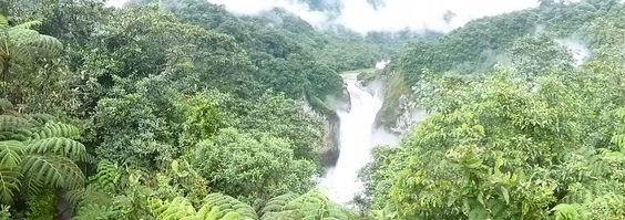 San Rafael waterfall is the highest of Ecuador and it is surrounded by the amazon jungle