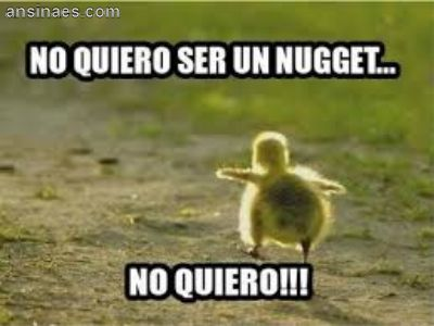 No quiero ser un Nugget... LOL I don't speak Spanish, but I know what lil guy is saying loud and clear!