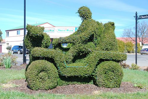 Topiary ride on mower with koala bears and wombats along for the ride, Oatlands.