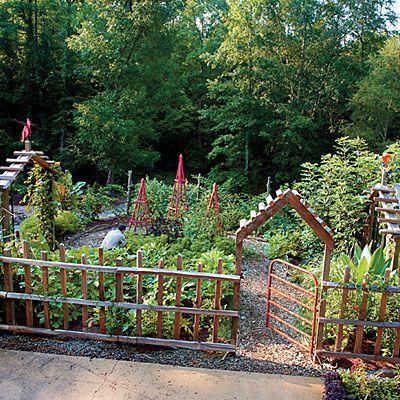 Southern vegetable garden in Birmingham, Alabama