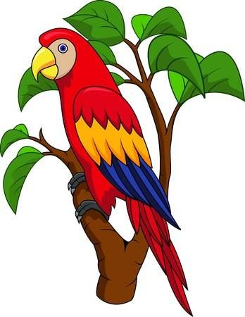 Guacamayo De Dibujos Animados De Aves En 2020 Arte De Aves Dibujos Guacamaya Dibujo