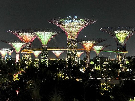 17 best images about singapore on pinterest gardens shops and scarlet