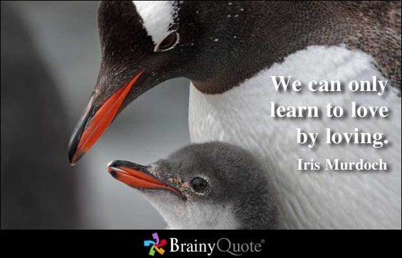 We can only learn to love by loving. - Iris Murdoch at BrainyQuote
