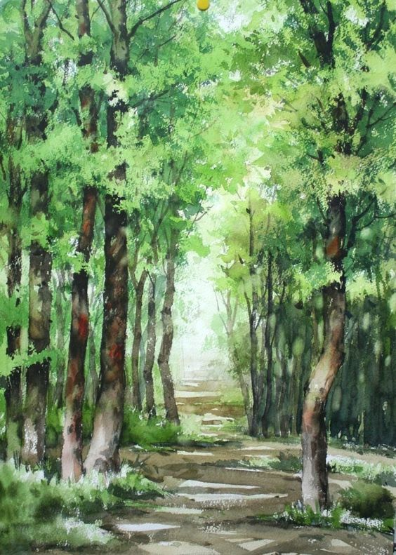 Beautiful Watercolor Painting Of Trees Lining A Forest Path Nam