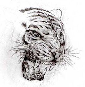 Plantillas O Disenos Tatuajes Tatuaje De Tigres Disenos Para