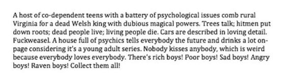 """Maggie Stiefvater's """"fixed"""" summary of The Raven Boys"""