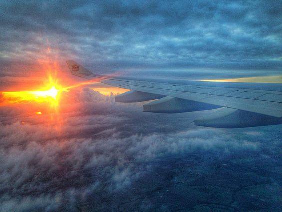the Sun under my wing