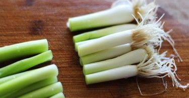 Deze groenten kun je zelf heel makkelijk opnieuw laten groeien