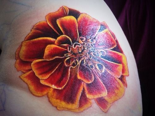 Pictures marigold tattoos google search tattoo ideas for Birth flower october tattoo