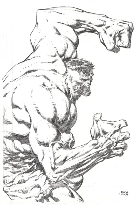 The Incredible Hulk by David Finch *