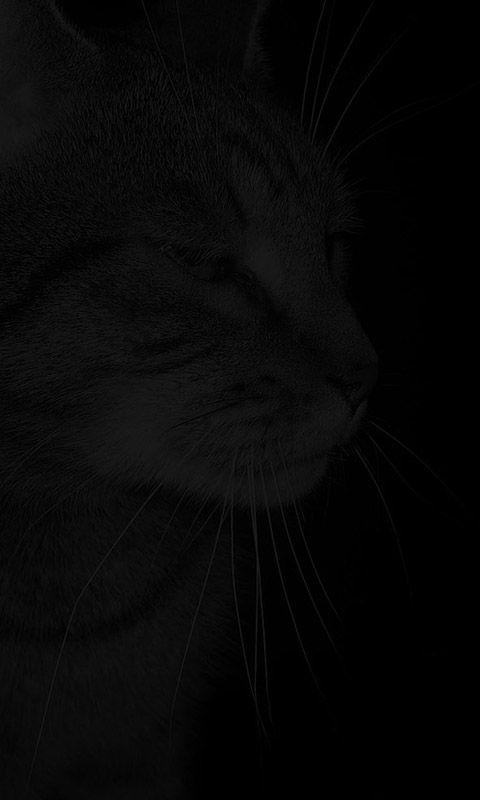 Schwarzes Handy Hintergrundbild Hintergrundbilder Hintergrund Schwarzer Hintergrund