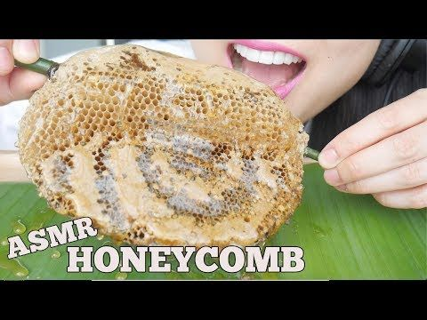 Sas Asmr Honeycomb Youtube Asmr Enjoy Eating Eat • 11 млн просмотров 2 года назад. pinterest