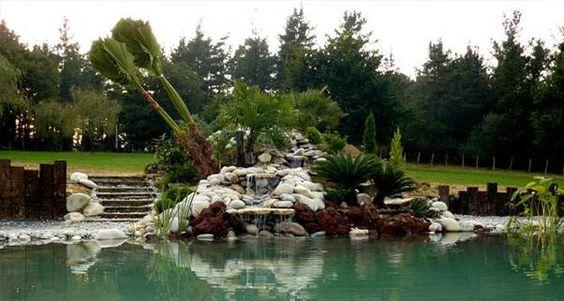 Piscinas naturales piscinas ecol gicas bio piscinas bio for Bio piscina