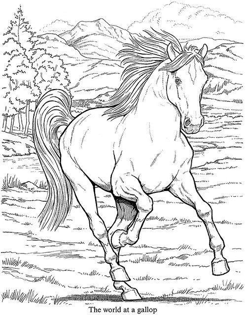 Galerie de coloriages gratuits coloriage-adulte-animaux-cheval. Un cheval au galop