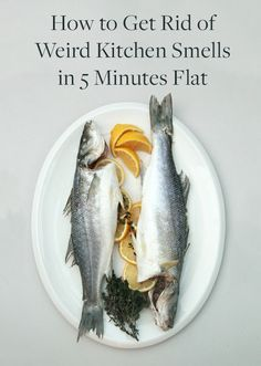 home cooking fish and weird on pinterest