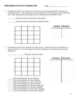 Genetics: Dihybrid (Two Factor) Practice Problem Worksheet ...