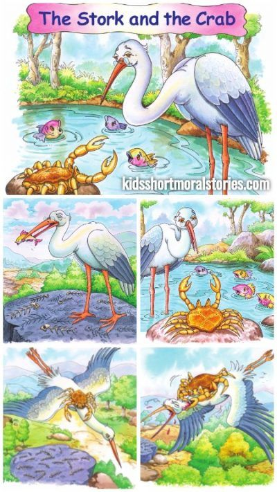 Short Stories from Panchatantra - The Stork and The Crab Story with Moral: Excess of greed is harmful.
