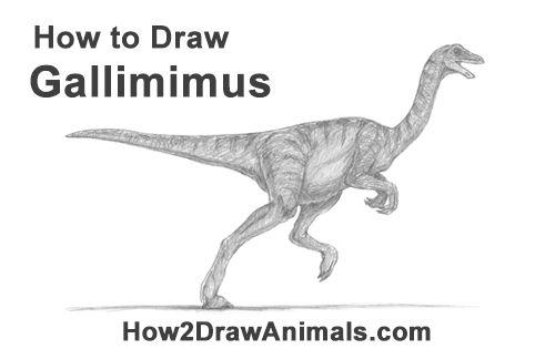 Draw A Gallimimus Dinosaur Draw Jurassic World Movie Dinosaur Drawing