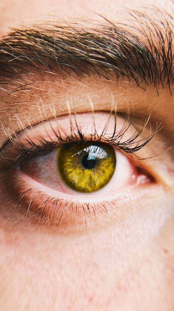 Gold Eyes Yellow Eyes Aesthetic Eyes Beautiful Eyes Color
