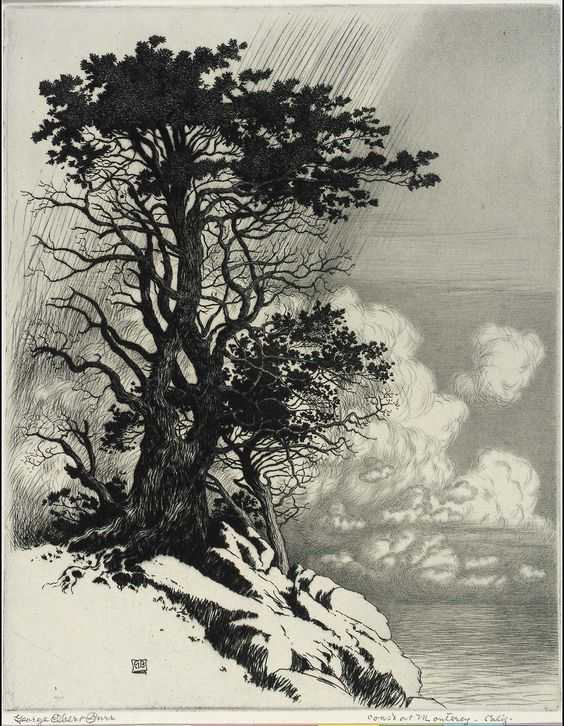 "George Elbert Burr (1859-1939) - Coast at Monterey, California. Tinted Drypoint Etching. Circa 1906. 10"" x 7-7/8""."